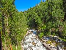 Rivière de montagne à Almaty Photo libre de droits