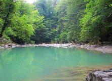 Rivière de montagne à proximité de Sotchi Photographie stock libre de droits