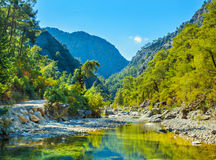 Rivière de montagne Photographie stock