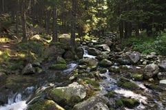 Rivière de montagne Image libre de droits