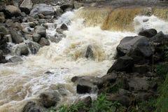 Rivière de montagne Photo libre de droits