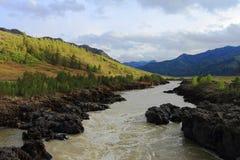 Rivière de montagne Images stock