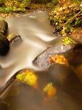 Rivière de montagne avec de bas niveau de l'eau, gravier avec les premières feuilles colorées Roches et rochers moussus sur la be Photographie stock libre de droits