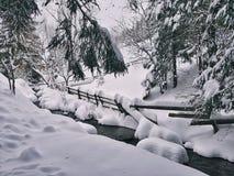 Rivière de montagne avec des cascades images libres de droits