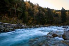 Rivière de montagne avec de l'eau les crevasses et vert Rivière de Bolshoy Zelenchuk images stock