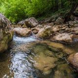 Rivière de montagne avec propre et eau douce dans les roches Images stock