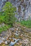 Rivière de montagne coulant par la gorge Photos libres de droits