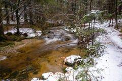 Rivière de montagne, courant, crique avec la rapide en automne en retard, hiver tôt avec la neige, gorge vintgar, Slovénie Image libre de droits