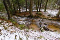 Rivière de montagne, courant, crique avec la rapide en automne en retard, hiver tôt avec la neige, gorge vintgar, Slovénie Images libres de droits