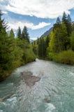 Rivière de montagne dans la forêt image stock