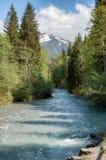 Rivière de montagne dans la forêt photographie stock
