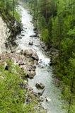 Rivière de montagne dans la République de la Sibérie de la Bouriatie images libres de droits