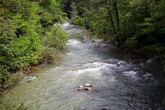 Rivière de montagne de Cerna dans le printemps, Herculane, Roumanie Photographie stock libre de droits