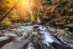 Rivière de montagne de paysage d'automne avec la petites cascade et rapide Images libres de droits