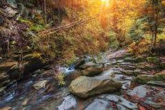 Rivière de montagne de paysage d'automne avec la petites cascade et rapide Photographie stock