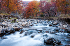 Rivière de montagne en automne Photographie stock libre de droits