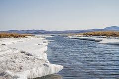 Rivière de montagne en hiver parmi la neige, les glaçons et l'herbe sèche sur le lac Baïkal Image stock