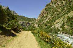 Rivière de montagne, gorge de Galuyan, Kirghizistan Image libre de droits
