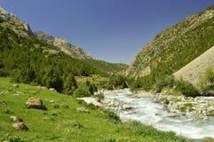 Rivière de montagne, gorge de Galuyan, Kirghizistan Photo stock