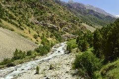 Rivière de montagne, gorge de Galuyan, Kirghizistan Photographie stock libre de droits