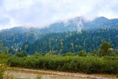 Rivière de montagne par temps pluvieux brumeux Image libre de droits