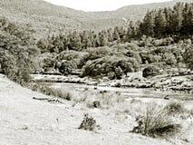 Rivière de montagne sur noir et blanc images libres de droits