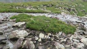 Rivi?re de montagne traversant les roches Paysage de montagnes d'Altai banque de vidéos