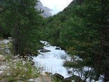 Rivière de montagnes Images stock