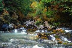 Rivière de montagnes Photographie stock libre de droits