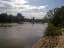 Rivière de Morava photographie stock