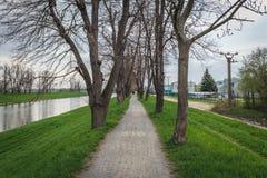 Rivière de Morava dans la République Tchèque Photo libre de droits