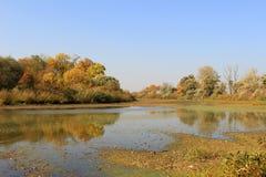 Rivière de Morava pendant l'automne - été indien de la Saint-Martin photo stock