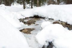 Rivière de mountine de neige - photo courante Images libres de droits