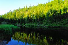 Rivière de Moyie près de ferry Idaho de Bonners Photographie stock