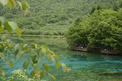 Rivière de paon de Jiuzhaigou Photo stock