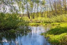 Rivière de Pekhorka dans le ` d'île d'orignaux de ` de réservation La Russie Fédération de Russie Image libre de droits
