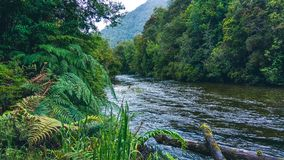 Rivière de Petrohue au Chili photos libres de droits