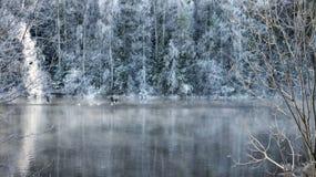 Rivière de plein hiver dans le début de la matinée images libres de droits