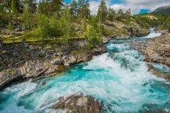 Rivière de précipitation sauvage de montagne photos stock