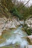 Rivière de Psakho Photo libre de droits