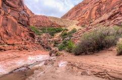 Rivière de région sauvage-Paria de falaises de Canyon-vermillon d'AZ_UT-Paria Photos stock