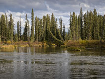 Rivière de Rancheria Photographie stock