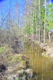 Rivière de ressort Photo libre de droits