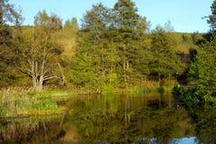Rivière de Rospuda, Pologne, Masuria, podlasie Photo libre de droits