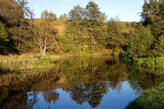 Rivière de Rospuda, Pologne, Masuria, podlasie Photographie stock libre de droits