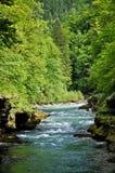 Rivière de Salsa Photo stock