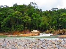 Rivière de Sarapiqui Images libres de droits