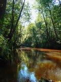 Rivière de Seyma Photos libres de droits