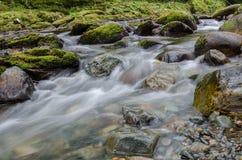 Rivière de Shimna Image libre de droits
