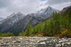 Rivière de Shumak en montagnes Sayan oriental Image libre de droits